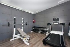 Gym 2 low res